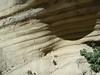 (ArgyleMJH) Tags: geology sedimentary rocks layers beds sandstone mudstone deepwater turbidite gradedbedding submarinefan bouma miocene puenteformation borregocanyontrail whiting ranch whitingranch regionalpark foothillranch orangecounty ocparks california