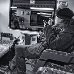 When it's my turn? (Ivan Rigamonti) Tags: bw smartphone publictransport zurich train switzerland dog streetphotography europe urbanexploration waiting ivanrigamonti