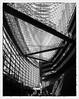 Tokyo International Forum (* Daniel *) Tags: polaroid polaroid110a polaroidlandcamera markdaniel markdanielphotocom ilford microphen ilfordfp4 ilfordfp4plus fp4 fp4plus sheetfilm 4x5 4x5sheetfilm ilfordfp4plussheetfilm ilfordmicrophen japan tokyo film filmgrain bw blackwhite blackandwhite mono monochrome architecture asa80 filmdev:recipe=11178 ilfordfp4125 film:brand=ilford film:name=ilfordfp4125 film:iso=80 developer:brand=ilford developer:name=ilfordmicrophen monochromejapan ysarex ysarex127mm ysarex127mmf47 polaroidpathfinder