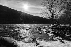 Flaring Sun Over A Cold Delaware (John Kocijanski) Tags: odc blacktrees landscape sun sunflare water river delawareriver snow winter blackandwhite trees canon1022mmlens