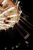 Life (lenanu) Tags: lenanu night nacht light lights licht lichter illumination beleuchtung fun spas child children kind kinder round rund fahrgeschäft ride fest volksfest fair chairoplane kettenkarussel karussel merrygoround movement bewegung blurry unscharf 35mm bokeh primelens festbrennweite nikon d5200 folkfestival germany deutschland upperpalatinate oberpfalz