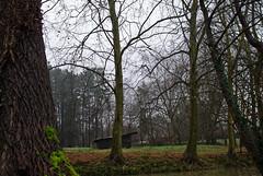 _DSC0051 (adrizufe) Tags: adrizufe aplusphoto adrianzubia abadiño nikon nikonstunninggallery ngc nature naturaleza nublado niebla basquecountry bizkaia cloudy ilovenature green