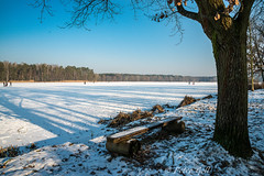 Sonniger Sonntag am Dechsendorfer Weiher (pego28) Tags: 2017 dechsendorf dechsendorfweiher eis erlangen winter germany sonntag sonnne blau blue sky himmel eisfläche ice schee snow tree baum bank bench sunday nikon nikkor d800
