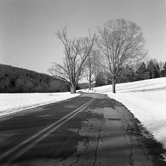 Road (Rafakoy) Tags: minoltaautocord rokkor75mmf35 75mm ilfordhp5plus ilford hp5 plus 400 kodakhc110 epsonperfectionv600 scan film pa honesdale country snow winter 2017 cold season white 120 autocord pennsylvania 6x6 square negative expired selfdeveloped hc110