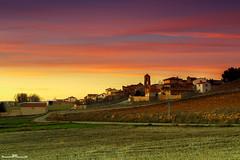 Gallocanta (www.jorgelazaro.es) Tags: gallocanta pueblo paisaje grullas aragón naturaleza laguna atardecer crepúsculo sol