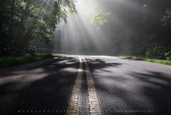 North Carolina Blue Ridge Parkway Shadows (Mark VanDyke Photography) Tags: blueridgemountains mountains northcarolina nc carolina westernnorthcarolina wnc blueridgeparkway brp shadows sunlight fog yellowline appalachianmountains southernappalachianmountains outdoors outside photography