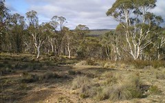 76, Mount Macanally, Peak View NSW