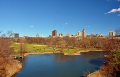 Central Park-Turtle Pond, 04.04.15 (gigi_nyc) Tags: nyc newyorkcity spring centralpark turtlepond springincentralpark