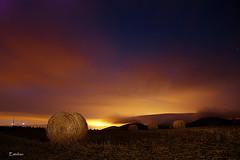 Pacas en Valdorba (esalinax) Tags: nocturna pacas valdorba