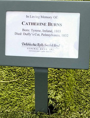 Burying Catherine Burns