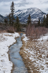 East of Jasper (Quincey Deters) Tags: 2016 allrightsreserved canada january nature outdoor winter â©quinceydeters lines leadingline vertical landscape grass stream water mountain tree shrub foliage northamerica alberta jaspernationalpark jasper canadianrockymountains cloud snow overcast morning day