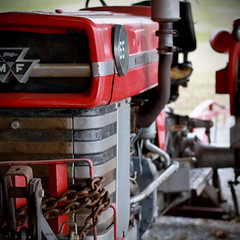 Red Tractor (SavaConta) Tags: red things 365class 2017yearlong tractor masseyferguson
