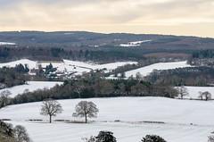 Snowy Albury (Stephen Reed) Tags: newlandscorner albury snow countryside winter d7000 nikon lightroomcc