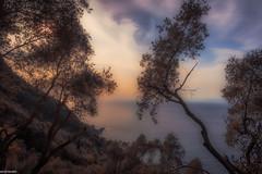 Ligurian watercolour (sandroscatto) Tags: ligura italy riviera tigullio portofino camogli genoa sea golden hour hdr watercolour watercolor canon 5d mark iii 24105
