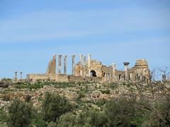 View to Capitoline Temple and Basilica, Volubilis, Morocco (Paul McClure DC) Tags: morocco almaghrib fèsmeknèsregion volubilis jan2017 roman architecture historic scenery