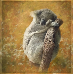 We are such stuff as dreams are made on; and our little life is rounded with a sleep. (William Shakespeare) (boeckli) Tags: brendastarr þórunnþorsteinsdóttir texture textures textur texturen frame photoborder koala tier animal sydney tarongazoo australia sleep schlaf williamshakespeare dreams brendaclarke artdigital