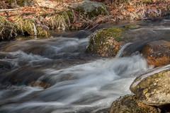 Woodland-Stream (desouto) Tags: nature landscape rivers lakes brook streams rushing water snow ice sky trees sunrise sunset colors