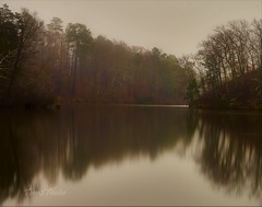 I tried to catch some fog, but I mist. (Tom Slate) Tags: fog foggy misty lake water petersburgva petersburgvirginia nature naturelover lakelover natureseeker longexposure virginia calm landscape naturescape reflection tree trees blurr scenery natureshots forest morning mist placid cloud woods