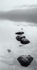 Misty Loch Lomond mono (amcgdesigns) Tags: andrewmcgavin eos7dmk2 lochlomond rocks reflections reflection silverefex scotland scottishweather loch water dreich mono monochrome blackandwhite landscape misty