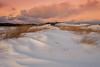 Snowy Dunes (djrocks66) Tags: nature outdoors winter cold snow sunset sunrise animals wildlife deer run beach ocean dunes water shore rocks birds bif long island ny fuji fujifilm xt2 landscapes waterscapes oceanscapes hiking