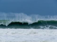IMG_2886.jpg (sfanshier) Tags: winterwaves beach torreypinesstatebeach ocean torreypinesstatepark waves