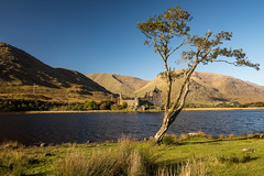 Scotland-25.jpg (paulvwright) Tags: castle nikon kilchurncastle fall nikond810 landscape d810 lochawe scotland