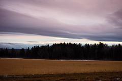 Lines (cowgirljo78) Tags: winter farmland fields treeline clouds cloudy light dramatic lines linear snow darkness wisconsin sanborn evening last late january blushing alfalfa