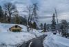 somewhere in Nathia gali. (haziq ali) Tags: winter january 2017 snow snowscape nature landscape beautiful falltrees nikon nikonphotographer nikonpakistan nathiagali kpk pakistan pakistaniphotographer