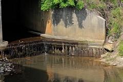 Culvert (Gabriel FW Koch) Tags: bridge water canon outdoors eos dof telephoto culvert flowingwater