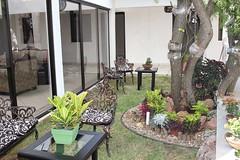 sala-jardin