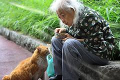🐈 与 老妇 (Kenny Teo (zoompict)) Tags: old portrait people lady cat emotion kennyteo zommpict