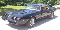 "1979 Pontiac Firebird • <a style=""font-size:0.8em;"" href=""http://www.flickr.com/photos/85572005@N00/19117586608/"" target=""_blank"">View on Flickr</a>"