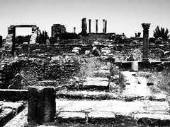 P5261323 (lnewman333) Tags: africa blackandwhite ancient northafrica historic worldheritagesite morocco fez maroc maghreb fes volubilis romanruins unescosite 1stcenturyad
