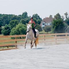 Gracie at a trot (losthalo) Tags: gracie riding pentaxk1000 lesson trot ektar outdoorarena smcpm100mmf28 pentaxart pentaxm100mm28