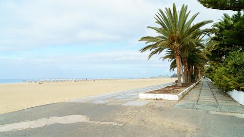 SIC_Playa_del_Matorral-0329.jpg