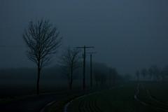 Foggy Day (betadecay2000) Tags: wetter weer meteo weather nebel fog cold kalt bedeckt bewölkt dunst dunkel dark germany deutschland winter nebelstimmung mood stimmung düster