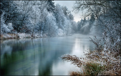Cold Winter Day (guenterleitenbauer) Tags: 2017 guenter günter landscape leitenbauer oberösterreich au bild bilder flickr foto fotos gunskirchen landschaft photo photos picture pictures wasser water wwwleitenbauernet österreich wels januar winter kalt cold fluss