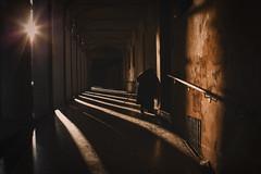 The Bending of light (♫♪♭Enricodot ♫♪♭ In gita fuori porta) Tags: enricodot bologna light lights luce sister sorella portici shadow shadows