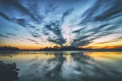 Deep thoughts (BigWhitePelican) Tags: helsinki finland sky morning sunrise reflections sea canoneos70d adobelightroom6 niktools 2016 december