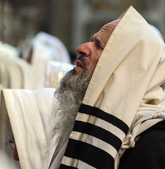 Oh Lord,  May The Coming Year Be Better Than the Ending One… (ybiberman) Tags: israel jerusalem alquds oldcity jewishquarter westernwall wailingwall suckot sukkot man jew ultraorthodox pray emotion tallit morning portrait candid streetphotography