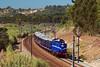 CPO 1424 (Nelso M. Silva) Tags: cp 1400 1424 comboio presidencial linha do norte