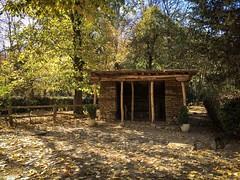 #taanayel #lebanon #autumn #nature_photography #old (salam.jana) Tags: taanayel lebanon autumn naturephotography old