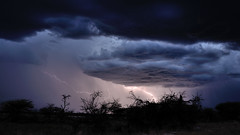 Stormy bush camp (no fear photo) Tags: travel travelphotography namibia chance lucky nikon stormynight nightsky nofearphotography bushsky thunder lightening stormy