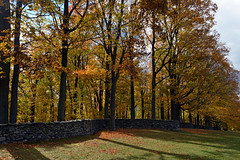 Storm King Wall (Eddie C3) Tags: stormkingartcenter newyork andygoldsworthy sculpture autumncolor autumn landscapes