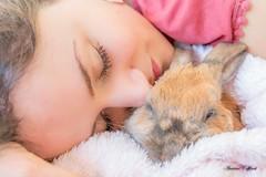 Mum & Rabbit (TonioSkipper) Tags: rabbit lapin animal bokeh portrait douceur canon70d photographieanimalière rose pink paix paisible peace calme quiet cute amour love cocooning sigma181835mm sérénité couverture