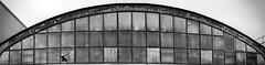 one broken (krøllx) Tags: bw akamphotowalk blackandwhite building midtnorge monochrome norway nyhavnen season squares trondheim trøndelag windows winter 20170107dsc07951pano201701071