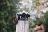 Nikon Df (Yuteneko) Tags: nikon df nikkor ai 28mm f28 af 28200mm f3556 itsukushima hiroshima japan acru shop fx f100 f5 junior