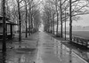 Hoboken (tchamber236) Tags: citypark ecology ecosystem environment environmentalism land municipalpark nature park rain rainfall rainshower rainstorm river scenery shower water hoboken nj unitedstates usa indiefilmlab