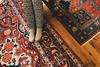 Carpets (Yuliya Bahr) Tags: carpet feets legs design rustic red warm winter morning girl pattern cosy socks bridalmorning hochzeitsfotografschweiz hochzeitsfotografnorwegen