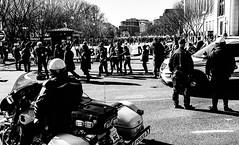 2017.02.04 No Muslim Ban 2, Washington, DC USA 00463
